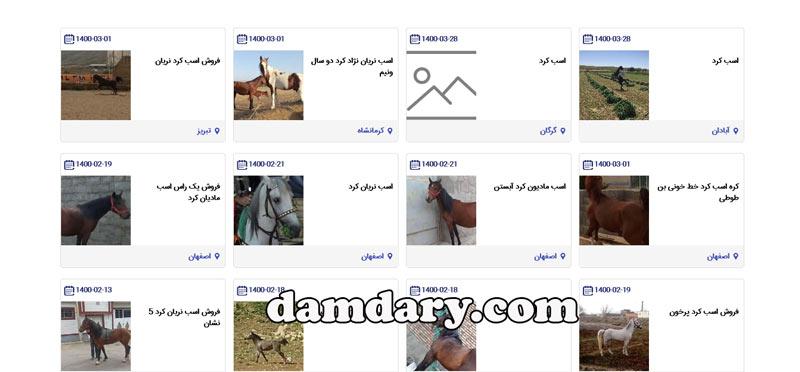 فروش اسب کرد